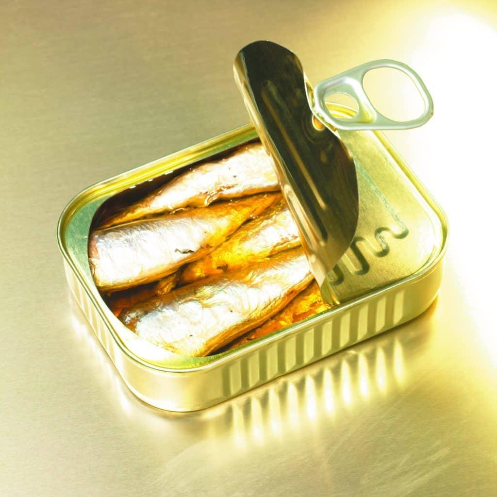 Sardines en conserve
