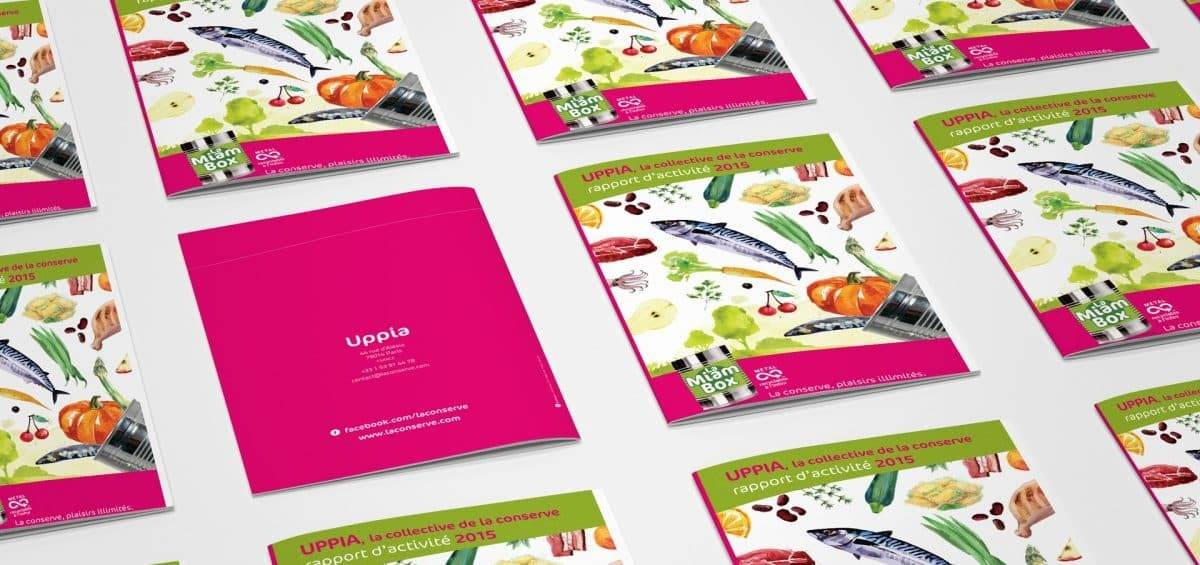 Rapport d'activité 2015 UPPIA